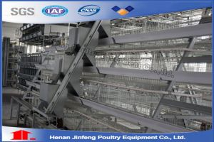 Chicken Battery Cages for Egg-Laying Hens for Kenya Farms pictures & photos