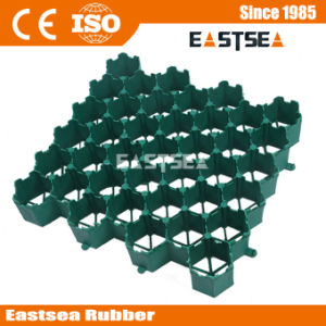 100% Recycled Materials Plastic Grass Mud Reinforcement Grids pictures & photos