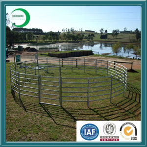 Oval Rail Cattle Panel (XY-420) pictures & photos