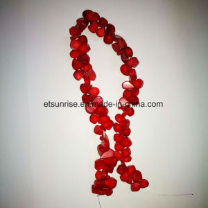 Fashion Stone Natural Crystal Red Sea Bamboo Coral Drop Bead pictures & photos