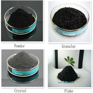 98% Super Potassium Humate High Humic Fulvic Acid pictures & photos