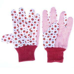 Gloves Garden pictures & photos