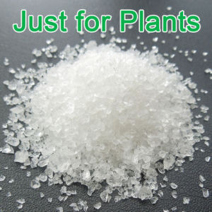 High Quality Super Absorbent Polymer Potassium Polyacrylate for Agriculture pictures & photos