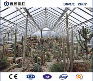 High Quality Single-Layer Multi-Span Film Greenhouse with Gable Roof pictures & photos