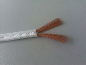 Two Cores 2X12AWG Spt Cable pictures & photos