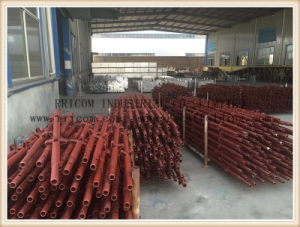Painted Kwikstage Scaffolding System/K-Stage System, Australian Scaffold pictures & photos