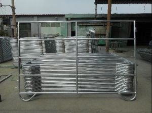 5foot*10foot Galvanized Steel Cattle Yard Panel/Used Livestock Panel pictures & photos