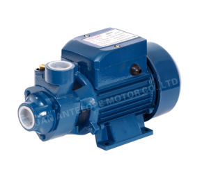 Peripheral Water Pump with CE Approved (QB60) pictures & photos