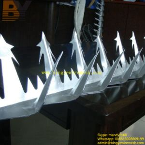 Barrier Spikes Bird Spike Security Wall Spike Razor Spike pictures & photos