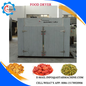 Factory Making Vegetable Washer and Dryer with Steam Heating pictures & photos