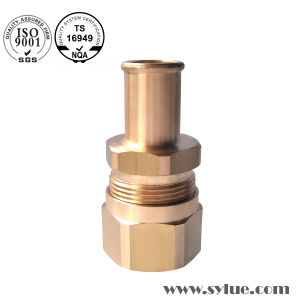 Bright Brass Hex Bolt & Nut pictures & photos