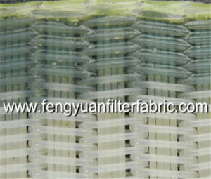 Polyester Spiral Press Filter Fabrics pictures & photos