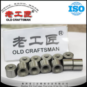 Hot Sale Tungsten Carbide Wire Drawing Die pictures & photos