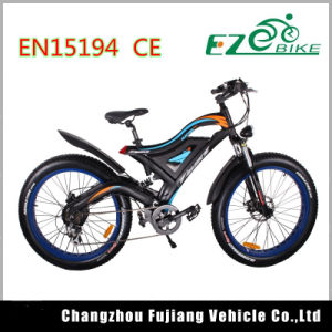 Electric Bike with Brushless Hub Motor Tde18 pictures & photos