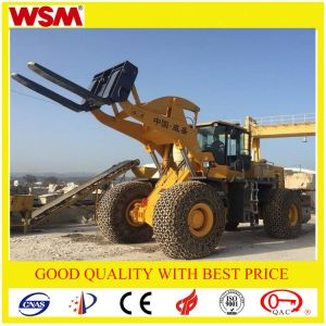 Heavy Duty Equipment for Sale Wsm971t27-I Diesel Forklift pictures & photos
