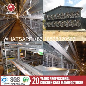 Silver Star Battery Layer Cage for Chicken Farm pictures & photos