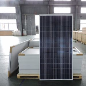 Tier 1 World Famous Brand Wholesale Price Yingli Solar 305W pictures & photos