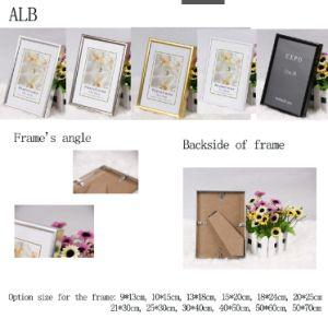 Aluminum Advertisement Frame (ALB) pictures & photos