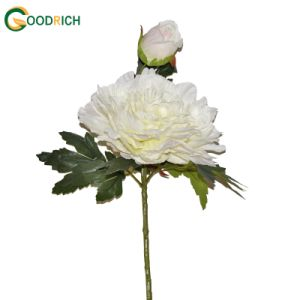 Single Stem Peony Artificial Flower pictures & photos
