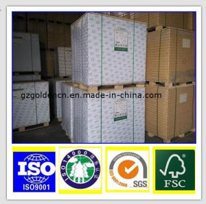 Cheap Offset Paper, Offset Printing Hot Sale Paper, Paper Manufacture pictures & photos