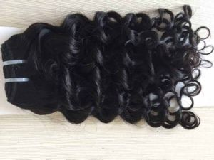 Virgin Human Hair, High Quality Pure Remy Hair Weft, Wholesale Price for Full Cuticle Loose Curly