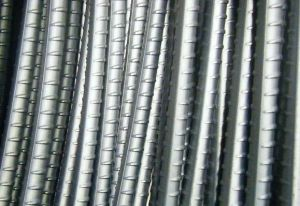 Steel Rebar pictures & photos