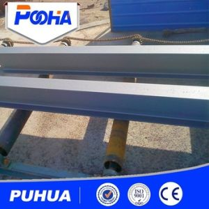 Puhua Brand Roller Type Shot Blasting Machine for Thick Plate Cleaning pictures & photos