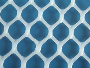 Plastic Flat Mesh (high quality) (XB-PLASTIC-0011) pictures & photos