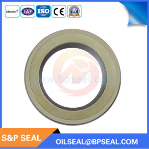 High Pressure Tcn Oil Seal Ap2240g for Hydraulic Excavator pictures & photos