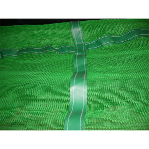 Green Construction safety Net or Scaffolding Net for Building pictures & photos
