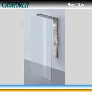 Stainless Rain Shower Column and Shower Screen Combo (LNH20-02) pictures & photos
