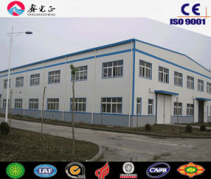 Steel Structure Building for Customized (SSW-617) pictures & photos
