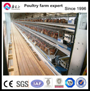 Automatic Chicken Equipment Layer Chicken Cage pictures & photos