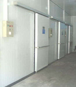 Sliding Door with Electric for Cold Storage Room pictures & photos