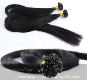 Wholesale U-Tip Tape Hair Products