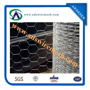 ISO9001: 2008 Hexagonal Wire Mesh (ADS-HWM-10) pictures & photos