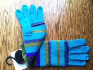 Lady Fashion Wool Gloves (JYG-25258) pictures & photos