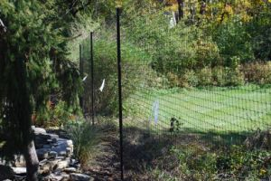 Deer Fence for Gardens