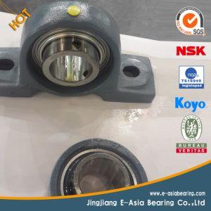 SKF NSK Ucp207 Insert Bearing Pillow Block Ball Bearing pictures & photos