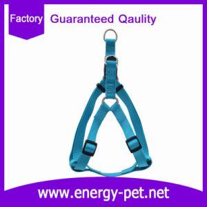 America Popular Easy Walking Dog Harness