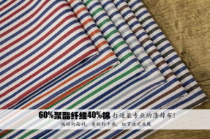 Polyester Cotton 4mm Stripes&Checks Yarn Dyed Textile Shirt Fabric pictures & photos