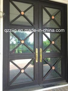 Elegant Wrought Iron Door with Simple Design (ZY-IR069)