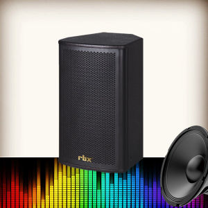 QS-1050 10 Inch Stage Speaker Monitor for PRO Audio System