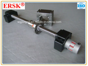 Flexible Insert Couplings Jaw Couplings pictures & photos