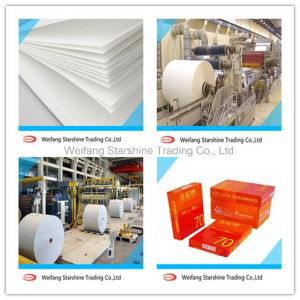 70-80g A4 Copy Paper for Printing