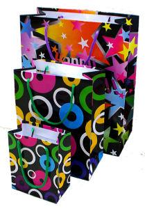 Custom Printed Paper Bags (OEM-PB030) pictures & photos