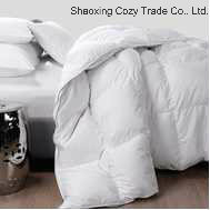 Donw Feather Quilt, Gold Quality Five Star Hotel Duvet pictures & photos