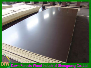 Construction Film Faced Plywood pictures & photos