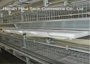 Best Selling Good Quality & Design Automatic Broiler Cage for Poultry Farm (H Type Frame) pictures & photos
