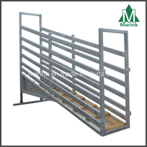 4m Adjustable Loading Ramp / Cattle Crush pictures & photos